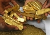 Gold Investment Group Cameroon (GIGC)